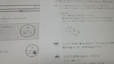 mihaji001s.JPG